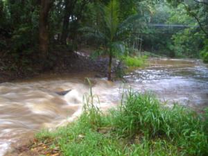 flooded-creek-qccc-mapleton