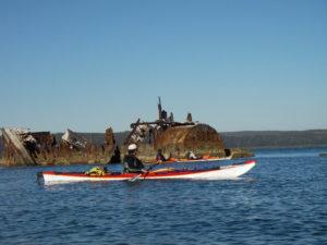 sea-kayak-queensland-expedition