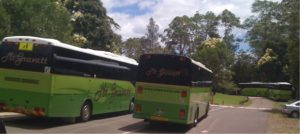 School Campsite Queensland Buses
